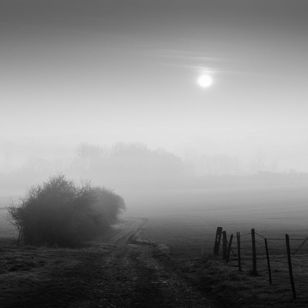 Paysage-poetique-carre-NB-MG-4243.jpg